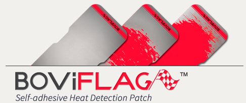 Heat Detection Patch