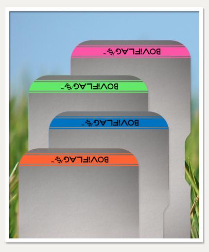 BOViFLAG colours